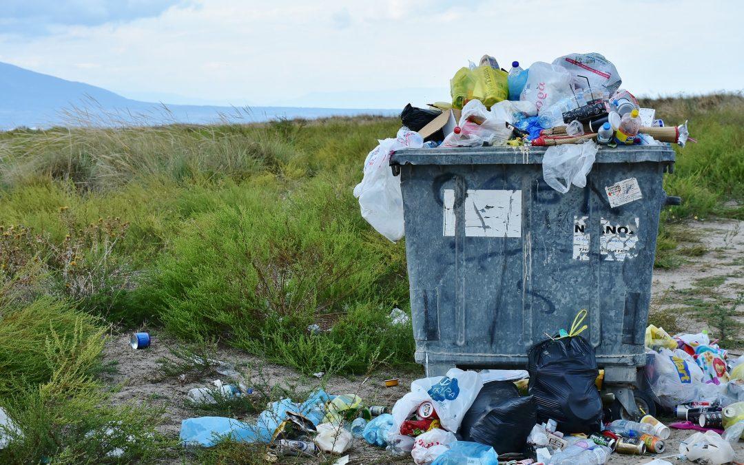 Chasse au plastique : après les sacs en plastique, quelles sont les prochaines victimes ?